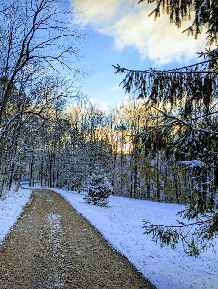 Snowy scenery surrounds the Cherry Ridge Retreat driveway sunrise in background