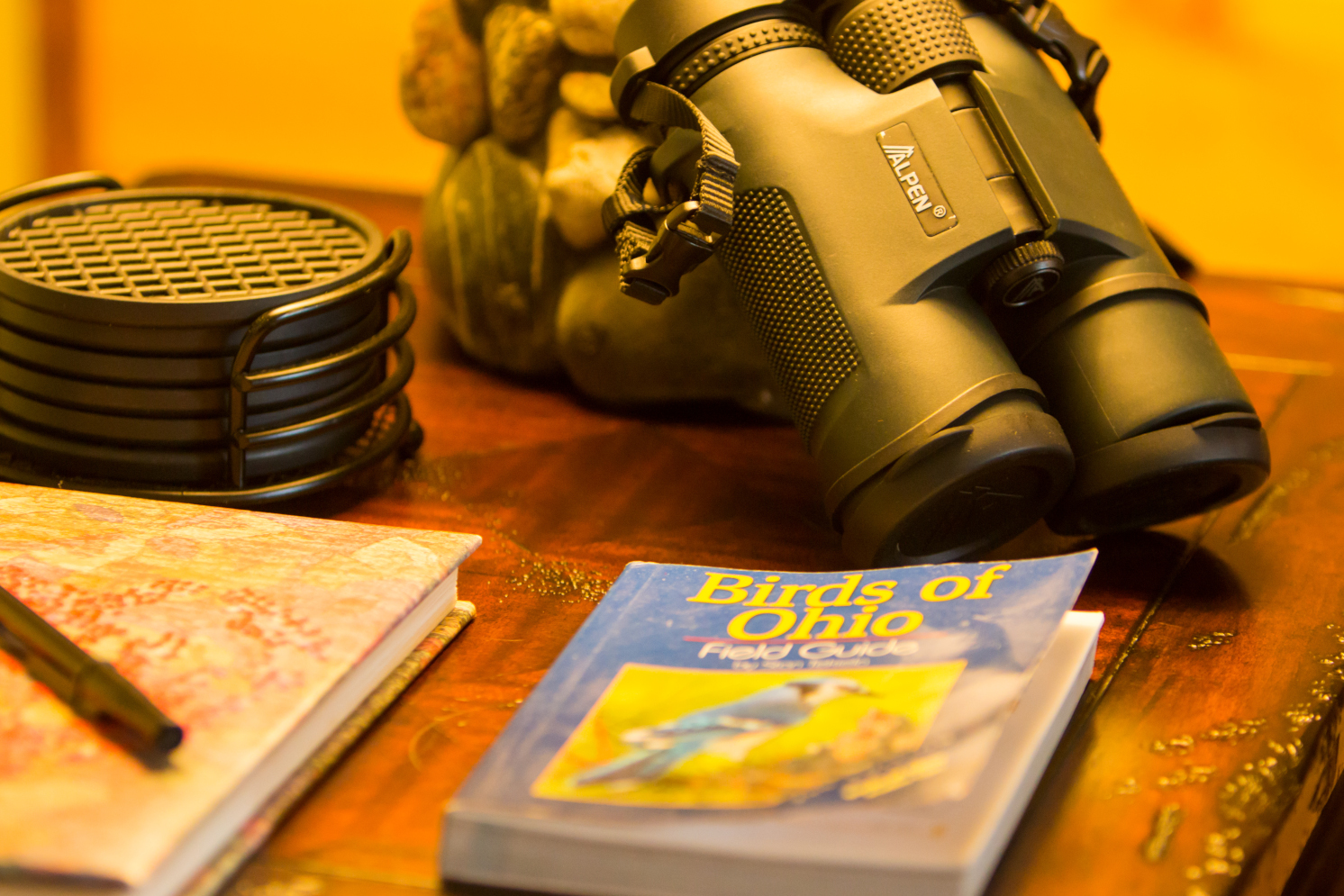 Binoculars, guest book on side table